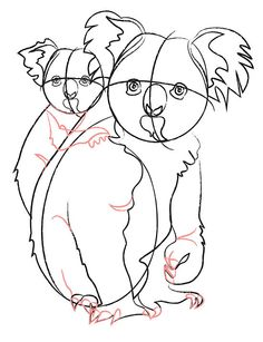 How to Draw Koala Bears: 9 Steps (with Pictures) - wikiHow