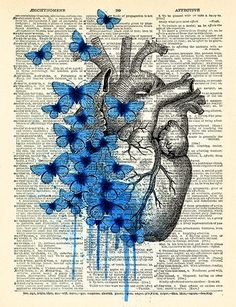 Heart Human Anatomy Butterfly Anatomical Heart Print Dictionary Page, Anatomy Heart Wall Decor, Heart Poster Anniversary Gift 467 - Maria Luiza Alves Silva - gutpin Art Sketchbook, Art Drawings, Drawings, Anatomy Art, Art, Heart Art, Book Art, Art Wallpaper, Aesthetic Art