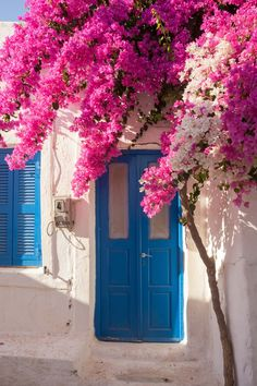Going to Paros, Greece? Check out the best pictures of landmarks, beaches and attractions in Paros. Bougainvillea, Beautiful World, Beautiful Places, Fond Design, Paros Greece, Balkon Design, Flower Aesthetic, Flower Wallpaper, Santorini