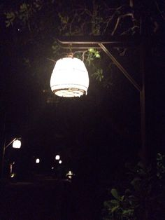 Birdcage Lamps at Night