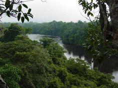 Escola da Amazônia Project: Education for Conservation on the Amazon Frontier, Brazil  Website: www.escoladaamazonia.org