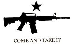 IAmEricas Flags - Come and Take It M4 Assault Rifle 3x5 Printed Polyester Flag, $10.00 (http://www.iamericasflags.com/products/come-and-take-it-assault-rifle-flag.html)