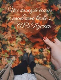 Russian Quotes, Poetry Quotes, Kids And Parenting, Good Morning, Cute Pictures, Have Fun, Wisdom, Romantic, Mood