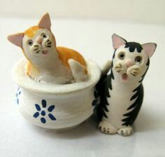 Color Box, Colour, Sweet Home, Cute Cats, Scotland, Miniatures, Pottery, Plates, Ebay