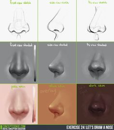 Drawing the nose tutorial http://cgcookie.com/concept/cgc-courses/tutorial-drawing-nose/