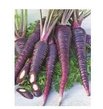 Zanahorarias moradas de #zanahorias_ecologicas #zanahorias