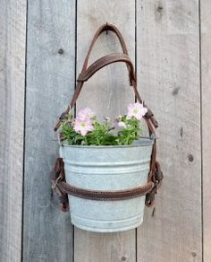 Horse bridle and bucket hanging planter