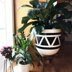 House Plants Decor, Plant Decor, Painted Pots, Hand Painted, Arte Elemental, Aztec Decor, Flower Pot Design, Cement Pots, Concrete Crafts