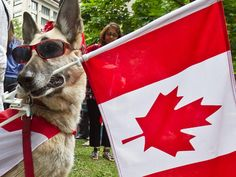 Happy #CanadaDay to all our great Canadian family members!
