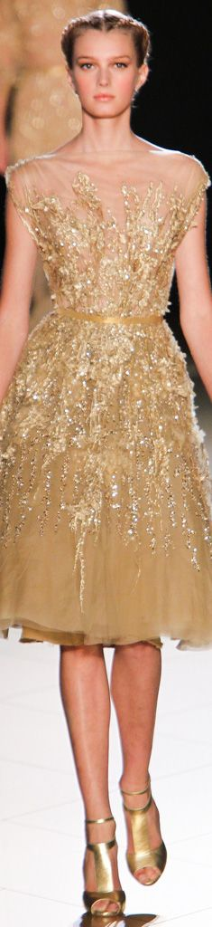 Elie Saab / Fall 2012 - Couture Collection