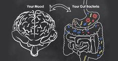 Ever wonder - what is the vagus nerve? As it turns out, a well-toned vagus nerve supports gut health and mental wellbeing. It's what unites the gut and brain. This explains why gut disorders are often connected to depression, anxiety, and more. Gut Brain, Brain Health, Gut Health, Mental Health, Brain Food, Health Tips, Health Articles, Health Care, Science Articles