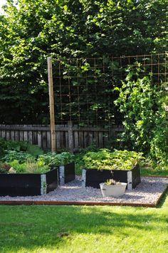 Veggies For Raised Beds using raised garden beds Porch Garden, Veg Garden, Garden Trellis, Garden Beds, Gravel Garden, Dream Garden, Garden Inspiration, Backyard Landscaping, The Secret Garden