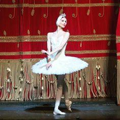 Svetlana Zakharova's curtain call at La Scala in Milan after Swan Lake #zakharova #swanlake #lascala #ballet #balletto