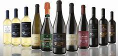 Una selezione di vini in ordine alfabetico dove potrai acquistare vini online. Vini selezionati delle migliori cantine