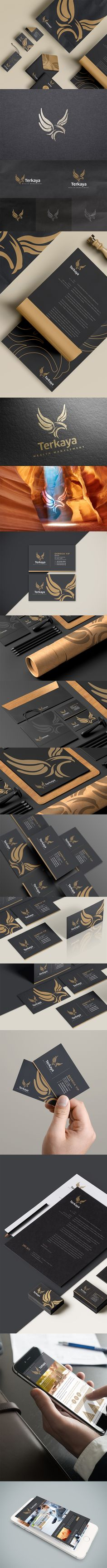 A branding project for Terkaya Wealth Management which is based in Singapore. Terkaya Wealth Management specializes in legacy planning and lifeline financial planning. #branding #logo #businesscard #logotype #falcon #investment #pantone #grey #dark #brand #letterhead #mockup More preview at   https://www.behance.net/gallery/28794903/Terkaya-wealth-management-branding http://www.lemongraphic.sg/2015/08/18/terkaya-wealth-management-branding/