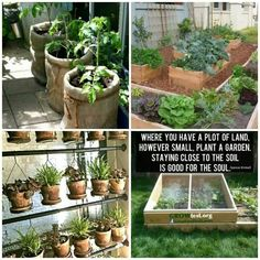 Homesteading love the ideas of using space better