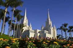 Mormon Church San Diego California USA. Flowers. Different viewpoint. Palmtrees