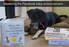 Mastering the Facebook...