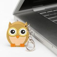 This is the cutest flash drive to keep all my computer stuff organized.  Luv it!