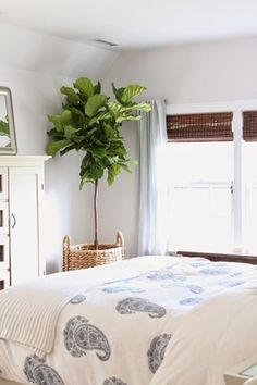 Plants are great, they are one of the easiest accessories to add to your  decor,they remove indoor air pollutants and they smell nice. An herb  garden in the kitchen, a tree in the living room, an orchid in the entry  are great of ways of incorporating mother nature into our homes. Here are