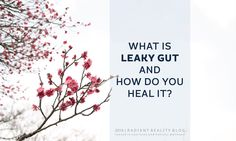 Radiant Reality Blog | Leaky Gut from http://www.radiantreality.net/2016/02/11/what-is-leaky-gut-and-how-do-you-heal-it/ #radiantreality #leakygut