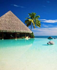 Tahiti, French Polynesia, or Fiji, Bora Bora, etc. Places Around The World, Oh The Places You'll Go, Places To Travel, Places To Visit, Vacation Destinations, Dream Vacations, Vacation Spots, Vacation Deals, Vacation Travel