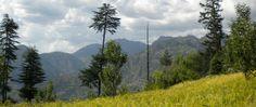 Trek to Bandal Village, HIMACHAL PRADESH