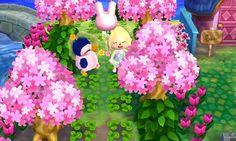 Animal Crossing Blog