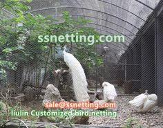 Bird Netting, Fence, Hand Weaving, Stainless Steel, Hand Knitting, Weaving