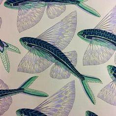 Flyingfish Milliemarotta Milliemarottacuriouscreatures Curiouscreatures Fibracolor Color Colour Coloring