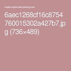 6aec1268cf16c8754760015302a427b7.jpg (736×489)
