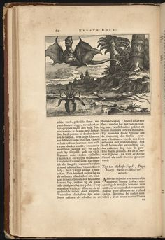 New and unknown world - A book by the Dutch explorer Arnoldus Montanus, detailing his travels through South and Central America (1671)