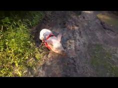 PROSIACZEK CHRUMEK kąpiel błotna / mud bath