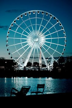 Tuleries Garden, Paris / I have been here twice and both times I missed seeing this. How can you miss a big ferris wheel?