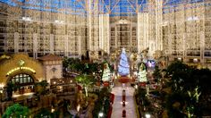 Gaylord Texan in Grapevine, Texas is an a-maze-ing place any old day, but at Christmas.....WOW!  Worth the trip from anywhere.