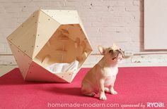 HomeMade Modern DIY EP13 Geometric Doghouse Options - includes full instructions