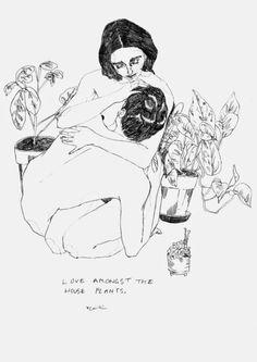 love amongst the house plants by caitlin shearer