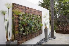 succulent, living wall, old door frame, plant arrangement - Modern Succulent Frame, Vertical Succulent Gardens, Succulent Landscaping, Succulents Garden, Backyard Landscaping, Garden Pots, Landscape Design, Garden Design, Landscape Architecture