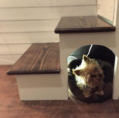 Own a tiny pooch? Build a dog house under the stairs.