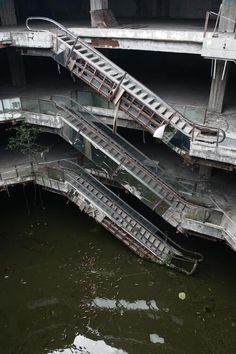 Abandoned Shopping Mall Becomes Koi Pond In Bangkok Verlassenes Einkaufszentrum. Abandoned Buildings, Abandoned Malls, Abandoned Mansions, Old Buildings, Abandoned Places In The Uk, Parks, Images Gif, Centre Commercial, Haunted Places