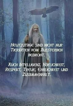 Aida Biermann - Welcome Girl Quotes, Me Quotes, Lyric Quotes, Lyrics, Thanks Words, German Quotes, Osho, Live Love, Life Advice