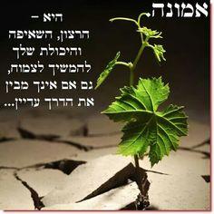 אמונה Hebrew Quotes, Hebrew Words, Soul Quotes, Life Quotes, Inspiring Quotes About Life, Inspirational Quotes, Social Thinking, Kindness Quotes, Truth Of Life