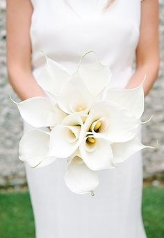 White calla lilly bouquet, understated, contemporary, monochrome everything-i-could-ever-want-for-my-wedding-and-mo Calla Lillies Bouquet, Lilies Flowers, Flowers Garden, Boquette Wedding, Wedding Ideas, Wedding Story, Trendy Wedding, Elegant Wedding, Wedding Inspiration