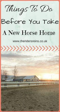 Horse Care Tips | Ba