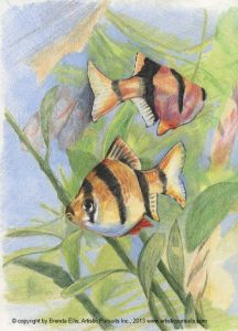 Bring a group of colorful creatures to life with Brenda Ellis' new Art Techniques lesson on creating a drawing with colored pencils. Brenda will walk you through the steps of selecting the subject for your artwork, deciding how to compose the picture, drawing the initial lines with a graphite pencil, adding and layering color, and sharpening edges, resulting in your own unique piece of art!
