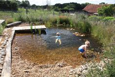 Organic Plunge Pool
