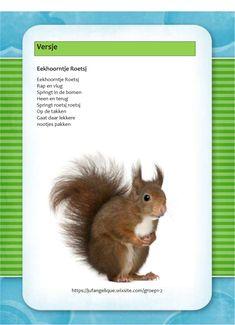 Versje: Eekhoorntje Roetsj Ppr, Little Pumpkin, Drama, Songs, History, School, Kids, Autumn, Animaux