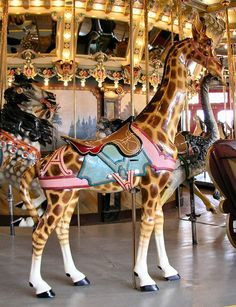The Dentzel Carousel at Glen Echo Dentzel Outer Row Giraffe