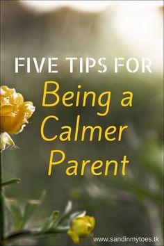 Did you catch yourself yelling at the kids again? Here are five tips to become a calmer parent, and pass on the positive vibes to your children. #ParentsKids&Parenst