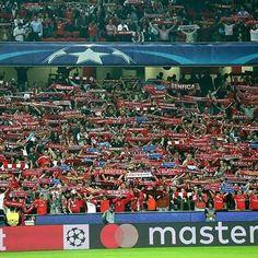 Um passo mais próximos!  Benfica - Dínamo Kiev 1-0